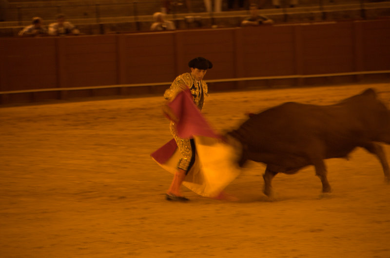 The Bullfight